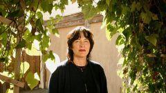 Элис Сиболд: биография, творчество, карьера, личная жизнь
