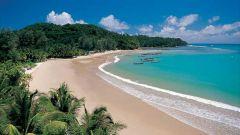 Тихий океан: несколько основных фактов