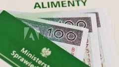 Розыск должника по алиментам: сроки, кто осуществляет, как объявить