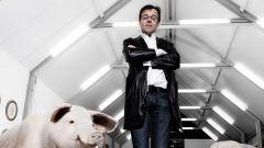 Вим Дельвуа: биография, творчество, карьера, личная жизнь