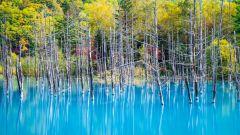 Самые красивые места мира: пруд Биэй
