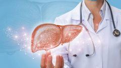 Как защитить печень на фоне коронавирусной инфекции