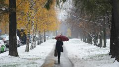 Чем опасна теплая зима