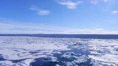 8 интересных фактов о Северном Ледовитом океане