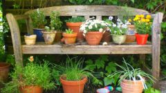Как выбрать посадочные емкости для садовых цветов