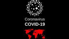 Сколько продлится пандемия коронавируса