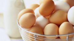 Рецепты с вареными яйцами: подборка самых простых и вкусных блюд