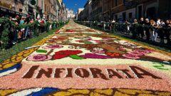 Цветочная живопись: фестиваль Инфьората