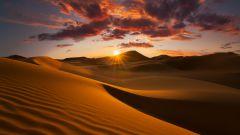 11 интересных фактов о пустынях