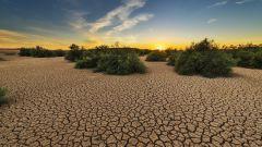 Какие аномалии погоды ждут мир летом 2020