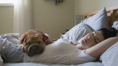 Почему глубокий сон важен и как увеличить его продолжительность