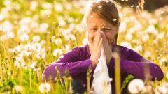 Как отличить коронавирус от аллергии