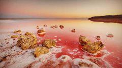 Кояшское озеро: необыкновенная достопримечательность Крыма