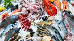О пользе рыбы и морепродуктов