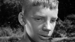 Вячеслав Царев: биография, творчество, карьера и личная жизнь
