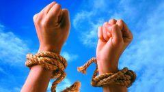 Как стратегия малых побед поможет изменить жизнь