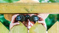 Как закрыть свой двор от глаз соседей