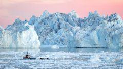 12 интересных фактов о ледниках