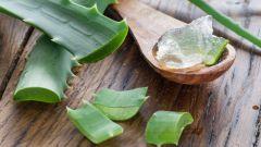 Какие травы лучше использовать для ухода за кожей лица
