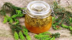 Сосновый сироп от кашля и простуды: рецепт и применение
