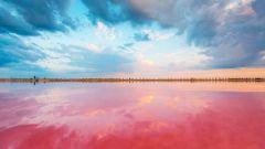 Необычные места России: озеро Сасык-Сиваш в Крыму
