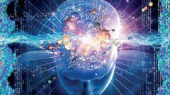 Как устроено человеческое сознание
