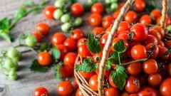 7 шагов к успешному выращиванию томатов зимой на подоконнике