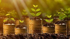 4 особенности пассивного дохода