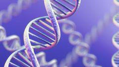 Гены, которые могут тебе навредить