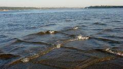 Море «в клетку»: опасно, пусть и прекрасно