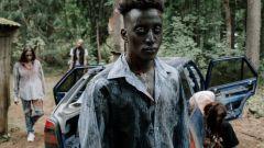 Как выжить в зомби-апокалипсисе?