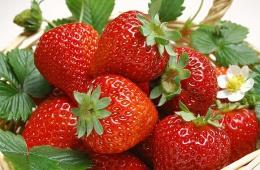 Земляника - самая вкусная ягода