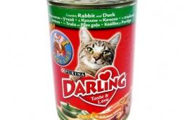 Все для любимого кота и даже «Дарлинг»