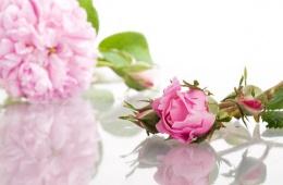 Натуральная розовая вода: аромат и свежесть