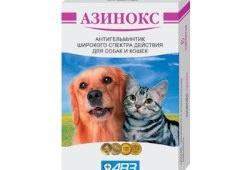 Эффективное и недорогое глистогонное средство для кошек и собак