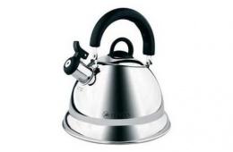 Zeidan Z 4020 Chloe – железный чайник со свистковым сигналом