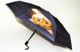Зонт Zest против осенней депрессии
