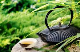 Важно уметь правильно заваривать зеленый чай