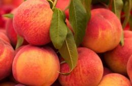 Полезный фрукт с неповторимым вкусом