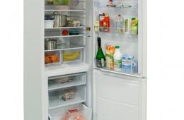 Холодильник Indesit B 18 FNF