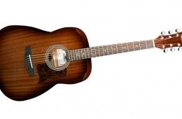 Гитара для начинающего