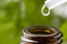 Замечательный антисепик - масло чайного дерева