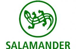 Salamander - моя самая любимая марка обуви