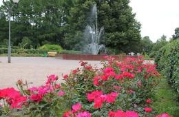 Восстановленный розарий в московском парке «Сокольники»