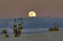 Летняя «зима» в пустыне белых песков