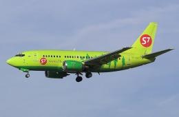 Прекрасные перевозки сибирской авиакомпанией S7