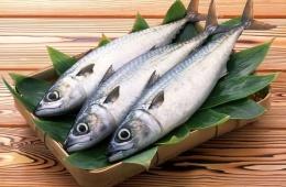 Рыба – очень ценный для человеческого рациона продукт