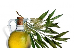 Масло чайного дерева один из древнейших средств народной медицины.