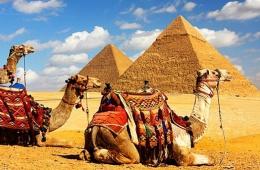 Египет - отдых в отеле