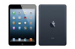 Женская версия iPad - Apple iPad mini